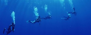 diving-in-puerto-plata-4