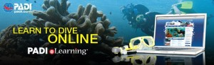 open water e learning banner
